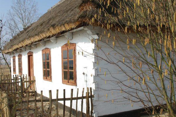 chalupa-ze-zlakowa-fot-m-bartosiewicz